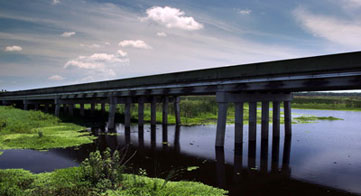 Bridge over Wetlands